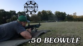 .50 Beowulf 100 yard water test