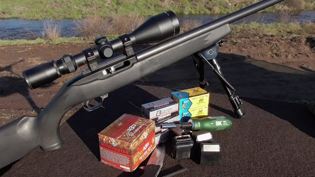 .22lr Accuracy – We Review How to