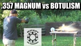627 V-COMP .357 Magnum vs Botulism