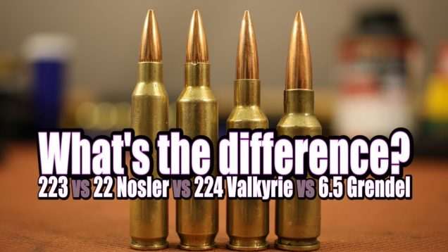 Picking the right AR cartridge for your needs 40