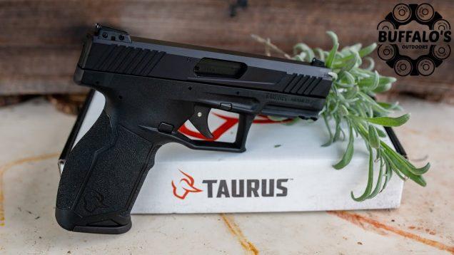 Taurus TX-22 RAISING THE BAR 4