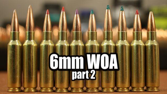 6mm WOA – part 2