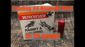 Loading #4 Bismuth Shot in 16 Gauge