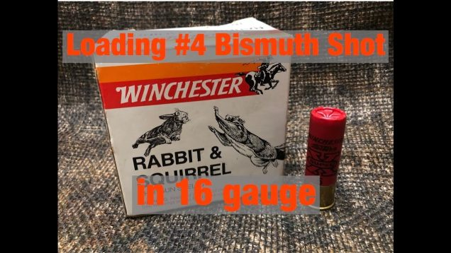 Loading #4 Bismuth Shot in 16 Gauge