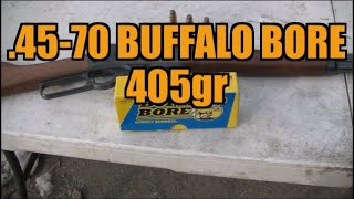 .45-70 Buffalo Bore 405gr Jacketed Flat Nose