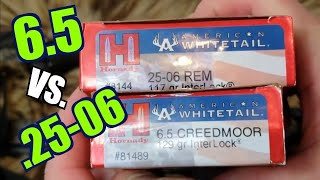 6.5 Creedmoor vs. 25-06 Rem Hornady American Whitetail Interlock Ballistics Gel test w Savage Rifles