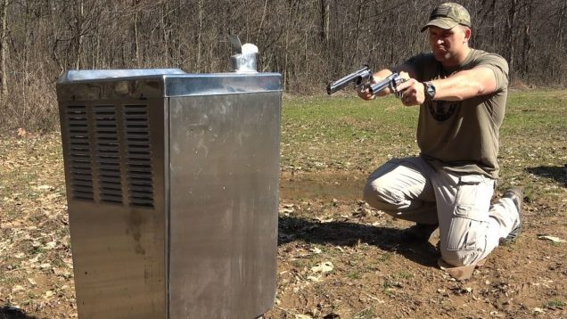 Could A Water Fountain Save Your Life??? 💦