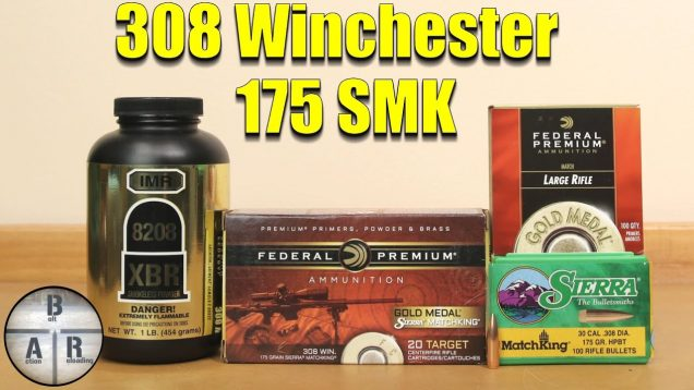 308 Winchester 175 SMK 8208 XBR