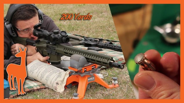 350 Legend Hornady American Whitetail vs Ballistic Gel at 100 and 200 Yards – The Social Regressive
