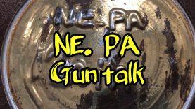 VR for N.E. PA Guntalk