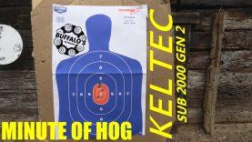 KELTEC SUB 2000 9mm Accuracy/Velocity
