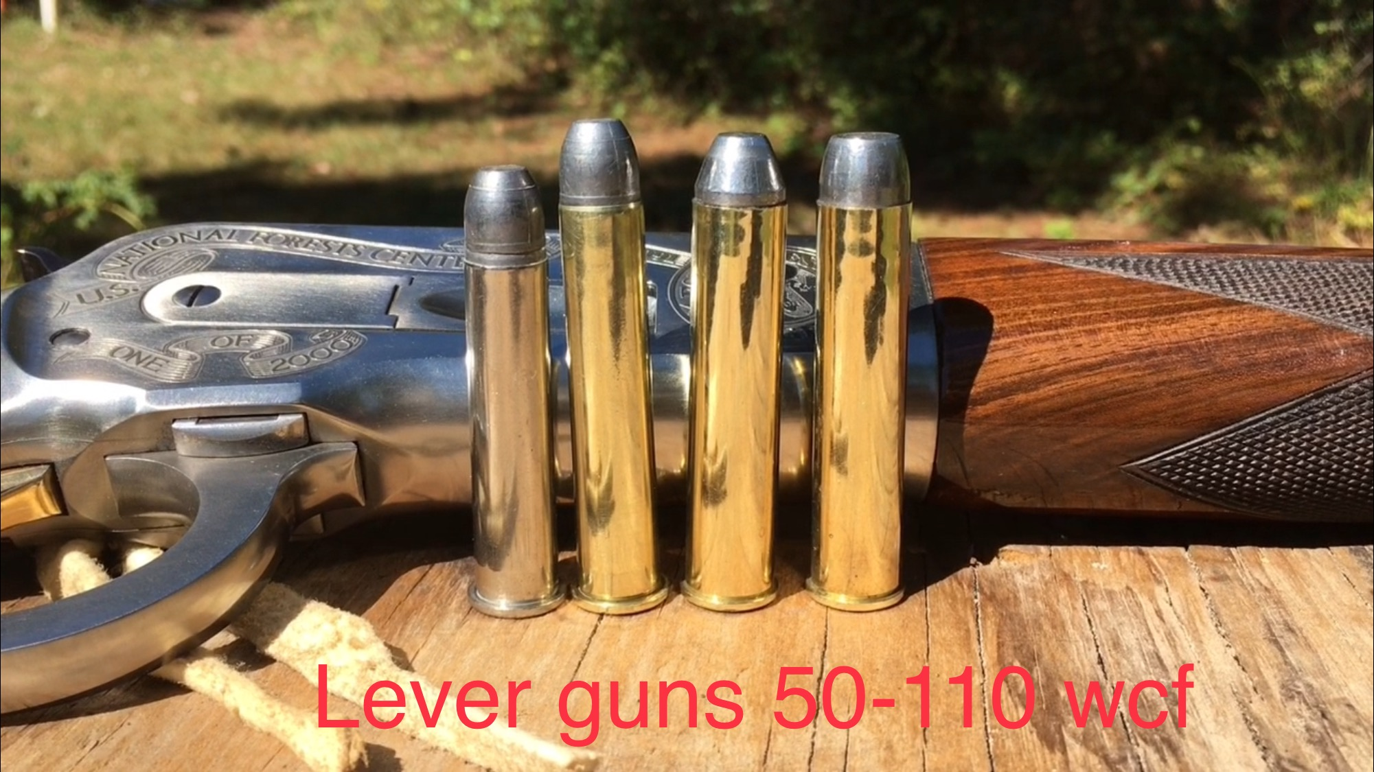 Part 3 testing the Woodleigh 50 Alaskan 50-110 Winchester 500 grain bullet 11